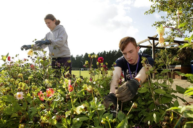 Practical_Horticulture_Courses